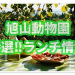 旭山動物園でランチ!子連れにおすすめの園内レストランを攻略!