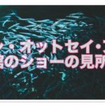 登別の水族館のイワシ・オットセイ・アシカ対決!!