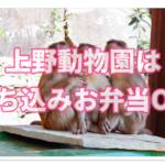 上野動物園は持ち込みお弁当OK!お昼はピクニック気分でランチ