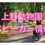 上野動物園の最新ベビーカー情報!貸し出しは?置き場や預かりは?