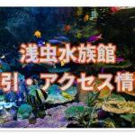 浅虫水族館の営業時間は?クーポンと割引料金&アクセス情報