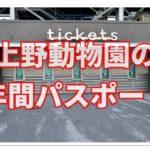 上野動物園の年間パスポートに特典はあるの?購入方法も紹介!