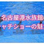 名古屋港水族館はシャチを西日本で唯一観られる貴重な水族館!