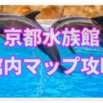 京都水族館で家族で楽しむための館内のフロアマップ攻略法!!