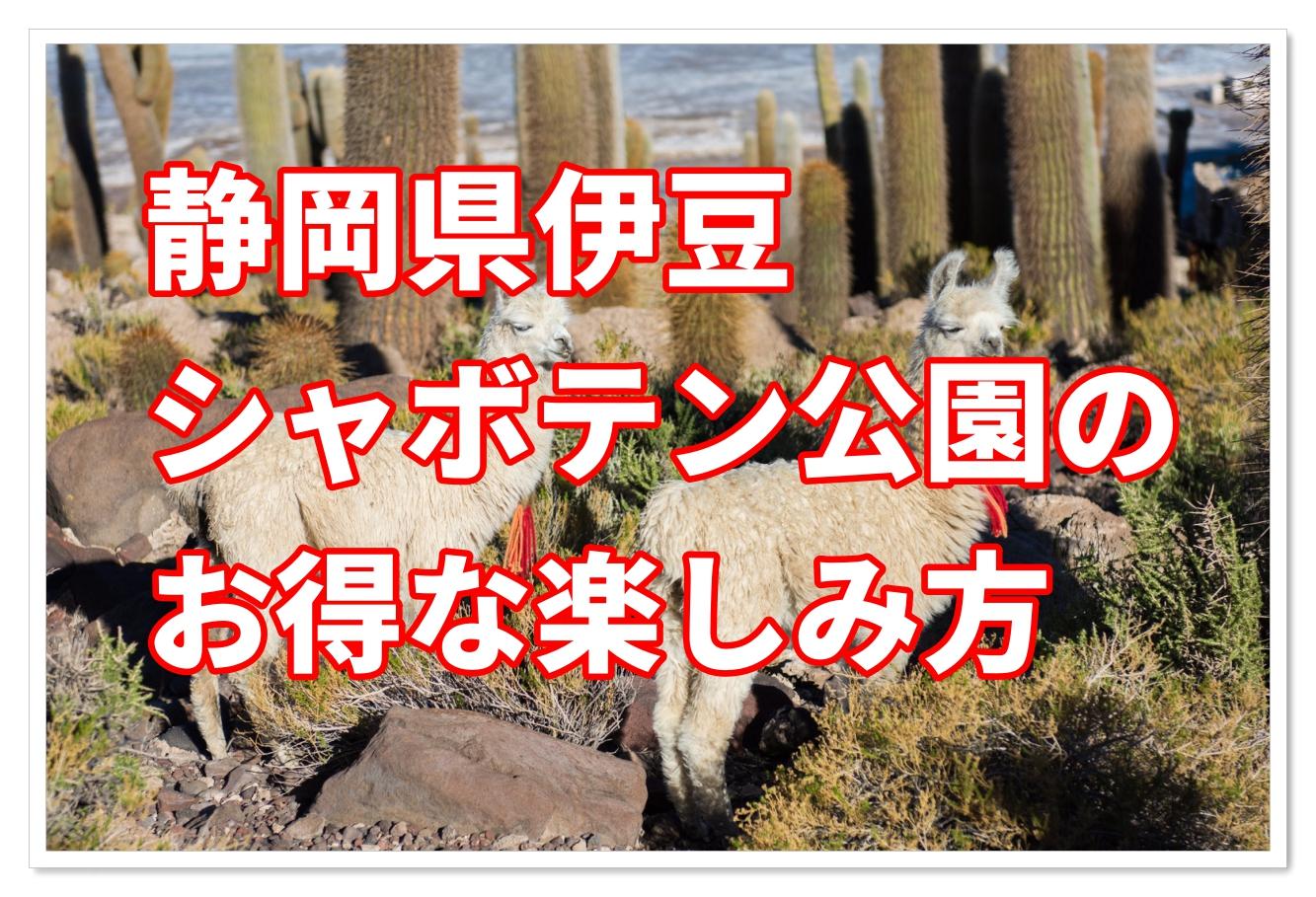 シャボテン 動物 公園 伊豆