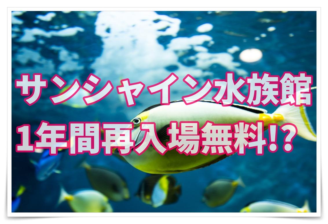 水族館 サンシャイン