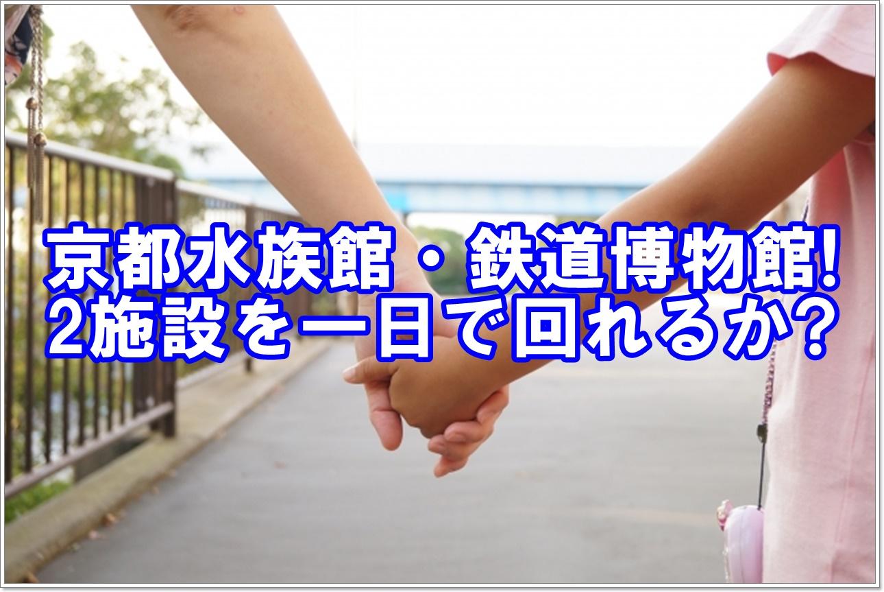料 入場 京都 水族館